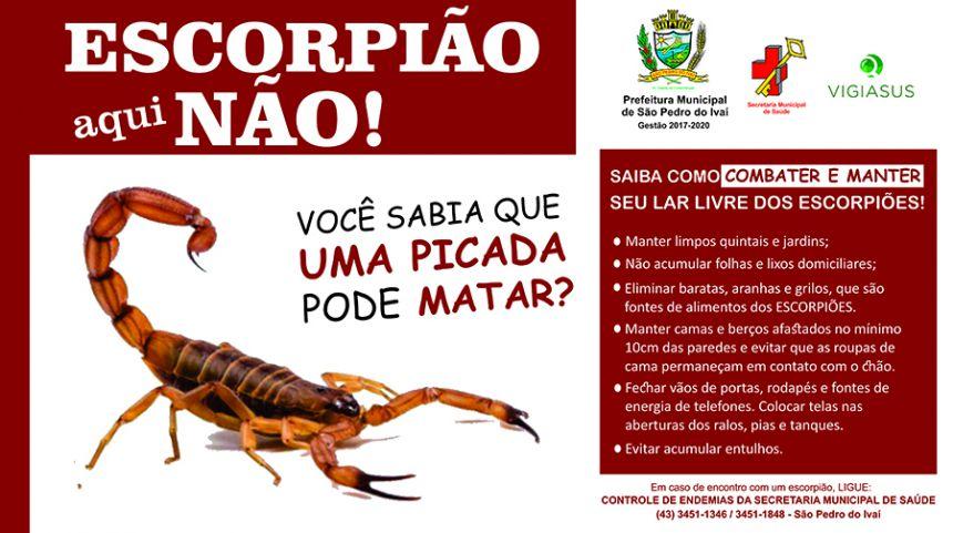 Prefeitura de São Pedro realiza campanha contra escorpião