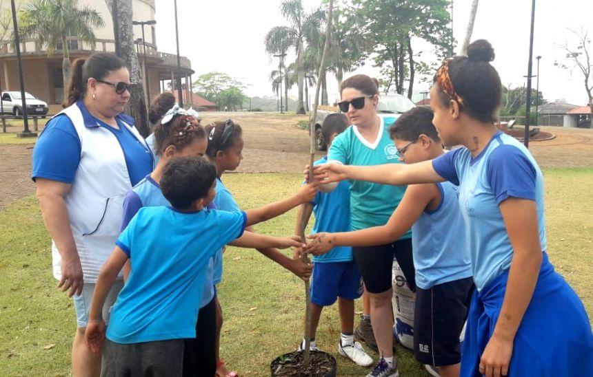 Com plantio de mudas de Ipês, estudantes e secretaria de Meio Ambiente celebram Dia da Árvore