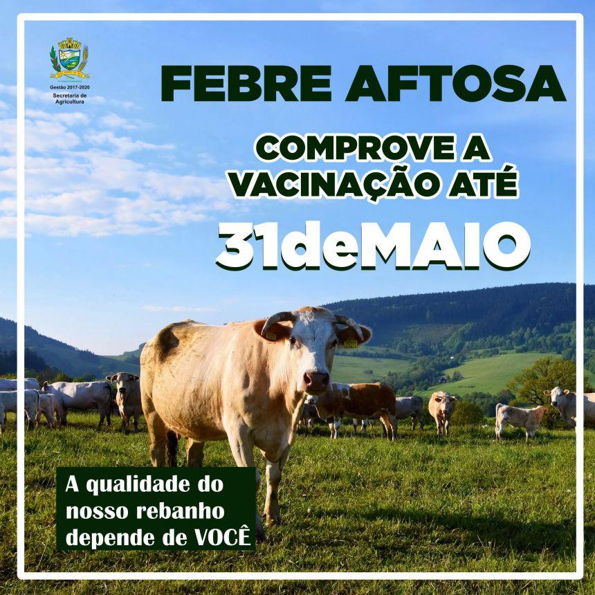 Vacinação contra Febre Aftosa vai até 31 de maio; informe-se
