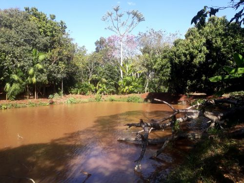 Represa na propriedade da agricultora familiar, Ana Lúcia Bonini