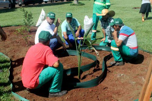 Servidores participam de Curso de Jardinagem