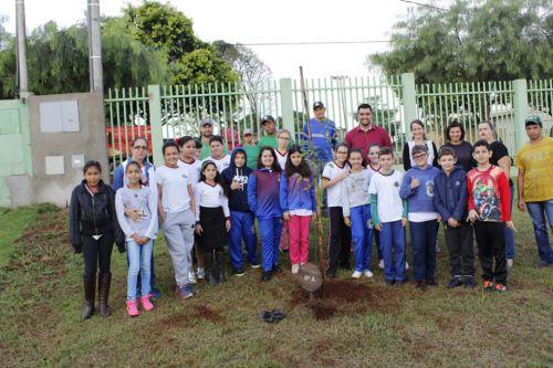 Alunos plantam mudas de árvores no pátio da Escola