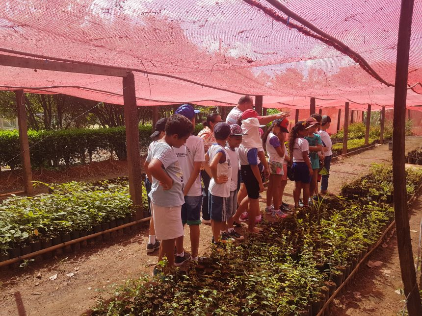 Educação Ambiental: Alunos da escola Nelson Magnani realizam visita ao Viveiro Municipal de Adamantina