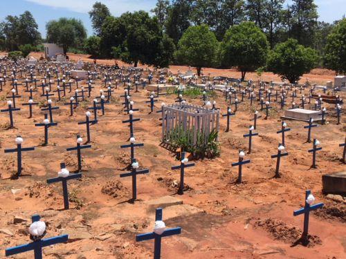 Flores foram fixadas nas cruzes do cemitério