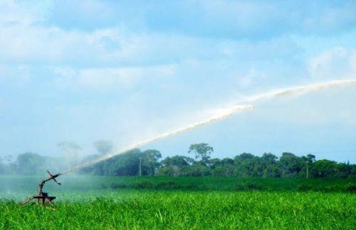 Consumidor que possui sistema de irriga��o tem direito a desconto na tarifa de energia el�trica