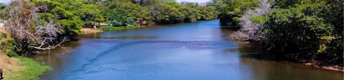 Rio uru - Uruana