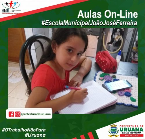 Aulas On-Line