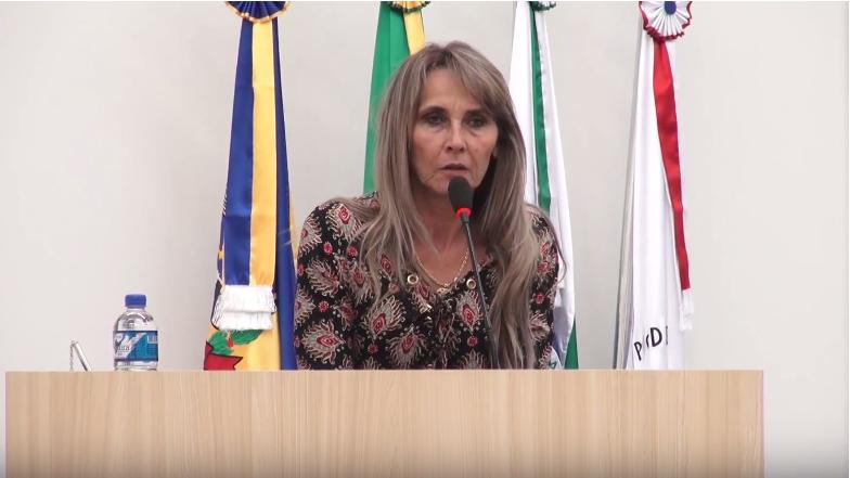 VEREADORA SOLICITA A REVITALIZAÇÃO DO FUNDO DE VALE