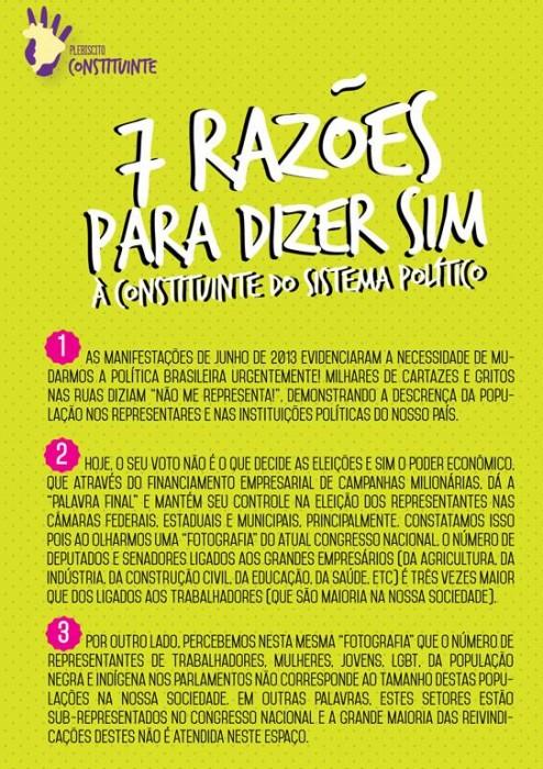 plebiscito-7-razoescolorfre
