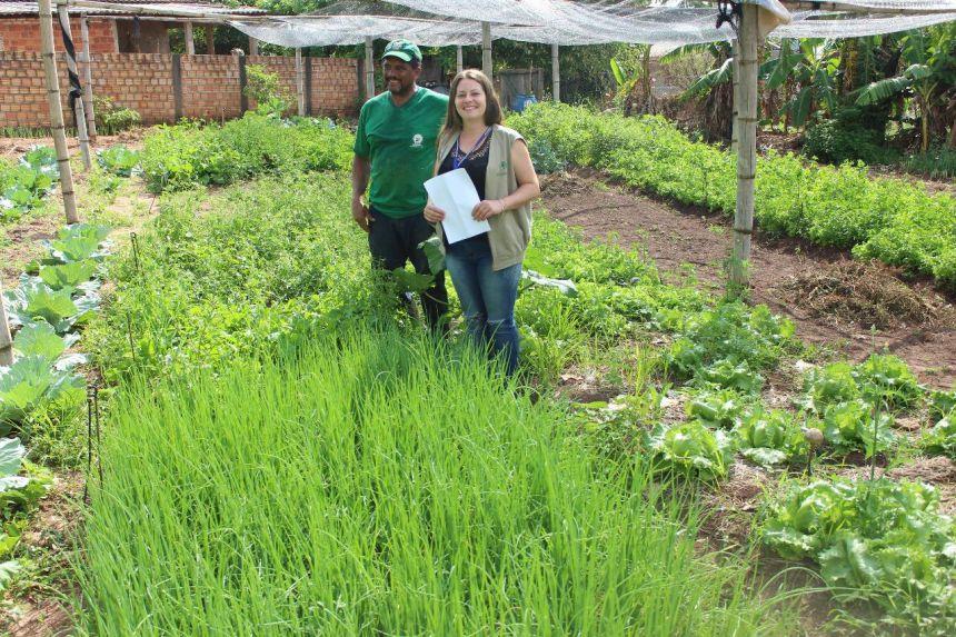 Dia do Alimento Sem Agrotóxico