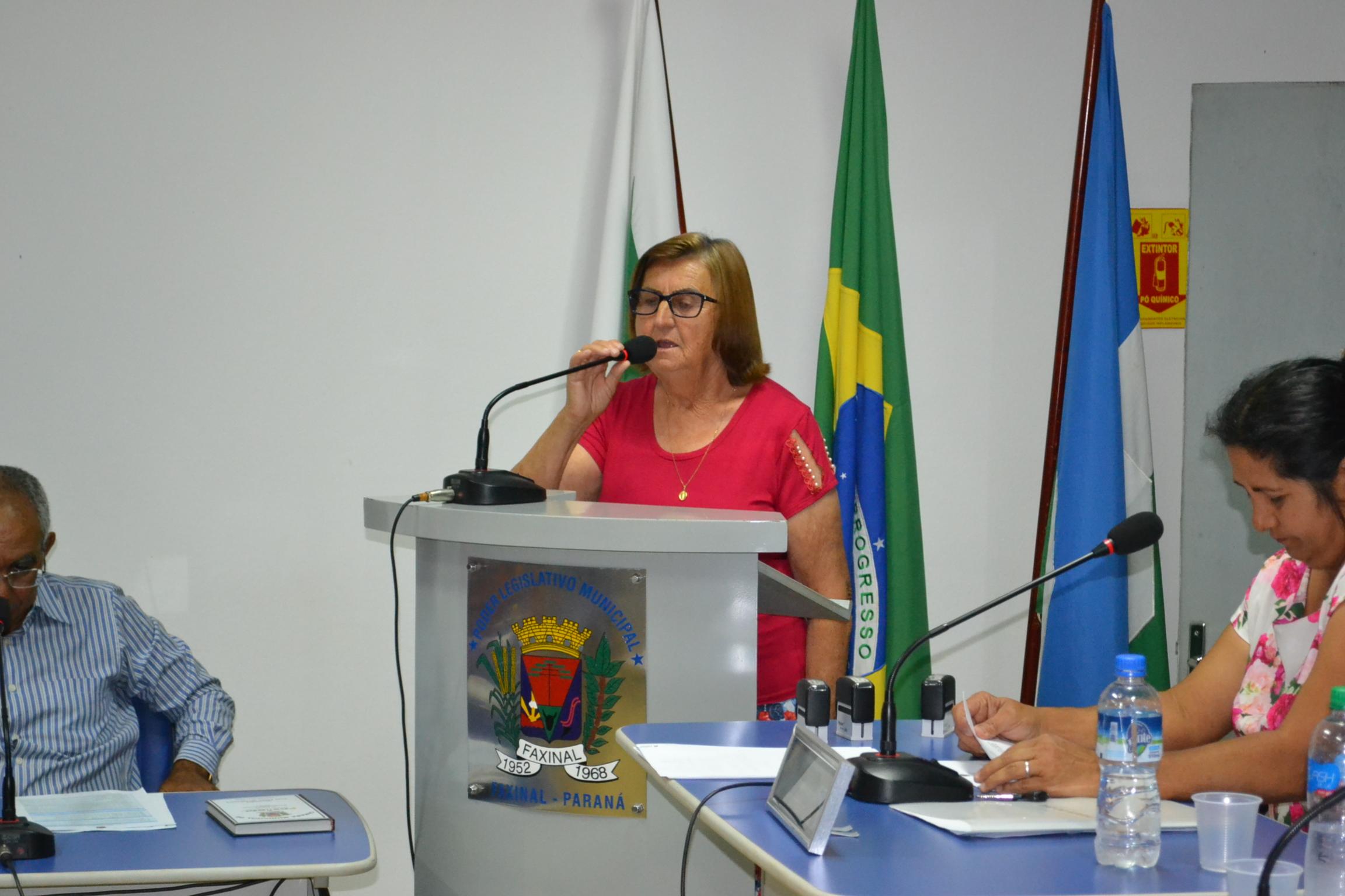 Propositura é de autoria da vereadora Maria Damareski