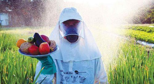 imagem de https://www.brasildefato.com.br/2018/06/19/reporter-sus-or-como-o-uso-dos-agrotoxicos-afeta-a-vida-dos-brasileiros/