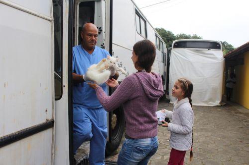 Em parceria com Governo do Estado mutirão de castração de cães e gatos em Pontal do Paraná realiza 400 procedimentos