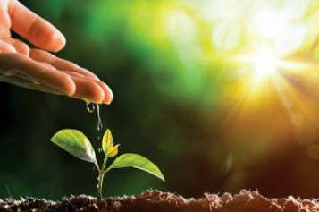 PIB do agronegócio cresce mais que conjunto da economia em 2019 e 2020