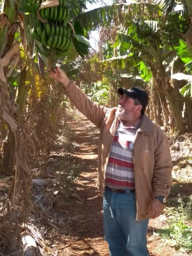 Missão Técnica da Agricultura