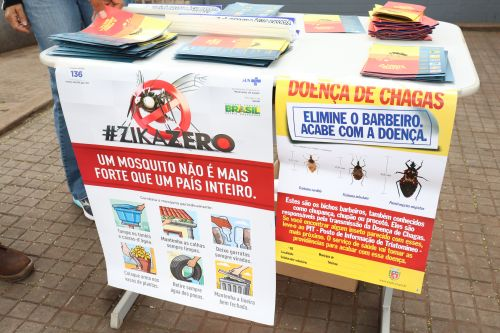 Dia D de combate as arboviroses