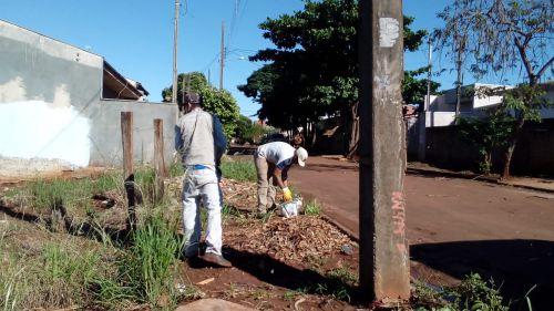 Mutirão de limpeza no combate contra a dengue
