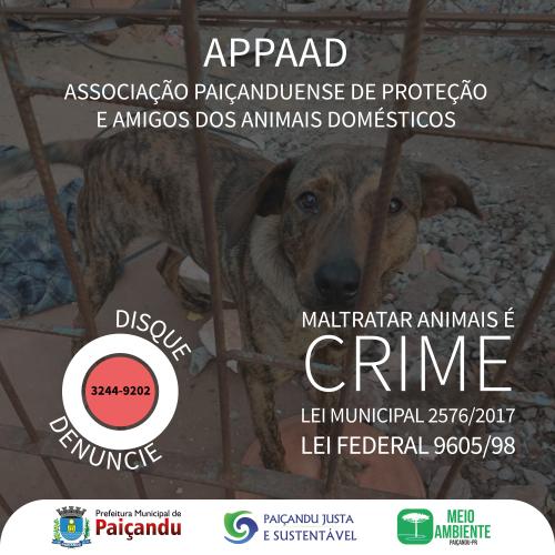 Maltratar animais é Crime