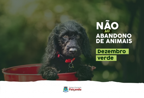 Dezembro Verde - Não ao abandono de animais