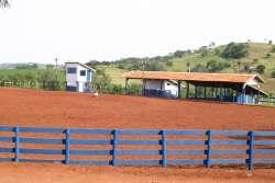 Pistas de Barbosa Ferraz serão palco de Campeonato de Laço