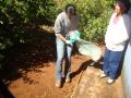 Arrastão contra a dengue