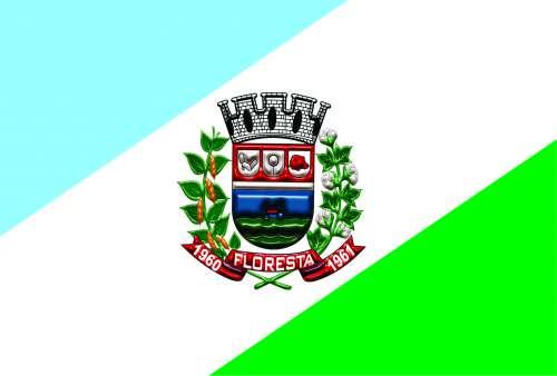 Bandeira do Município de Floresta