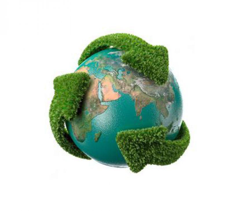 Lei dos Crimes Ambientais - Lei 9.605/1998
