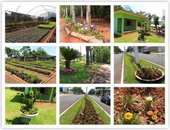 Parque Ecológico: Turismo e Meio Ambiente