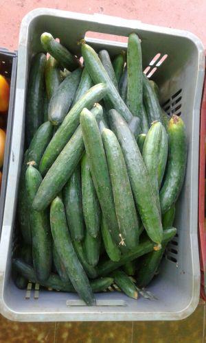 Programa Compra Direta e Agricultura Familiar