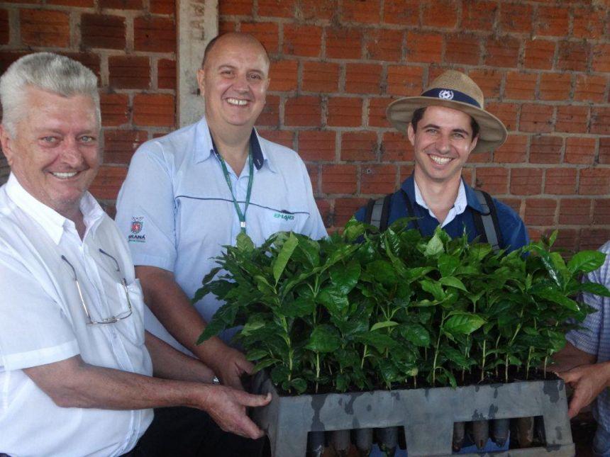 Alunos de agronomia da UFPR, Campus de Palotina visitam cafezais de Jesuítas