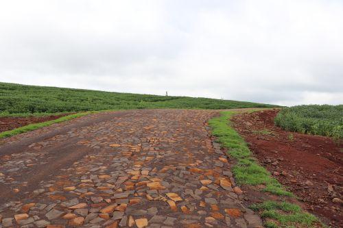 Governo de Cafelândia conclui pavimentação poliédrica entre o Central Sto Antônio e Silva Jardim