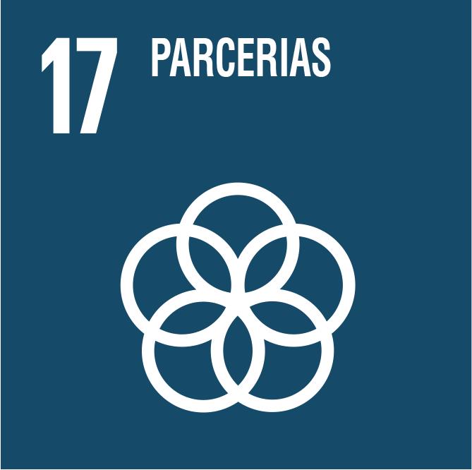 Meios de implementação (Fortalecer os mecanismos de implementação e revitalizar a parceria global para o desenvolvimento sustentável).