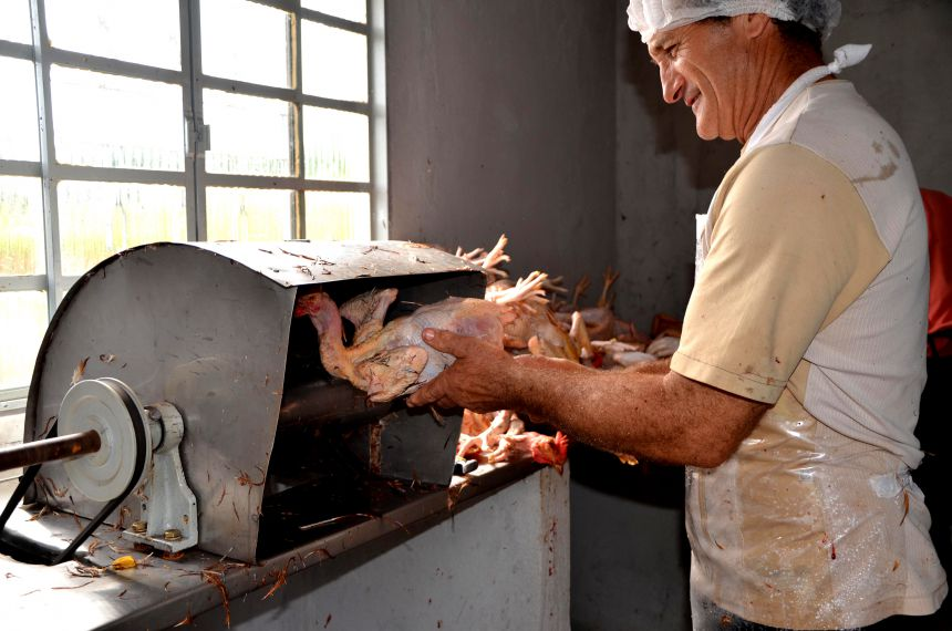 Curso de manipulação de alimentos está com vagas abertas em Ubiratã; Curso é obrigatório para pessoas que atuam com o setor alimentício