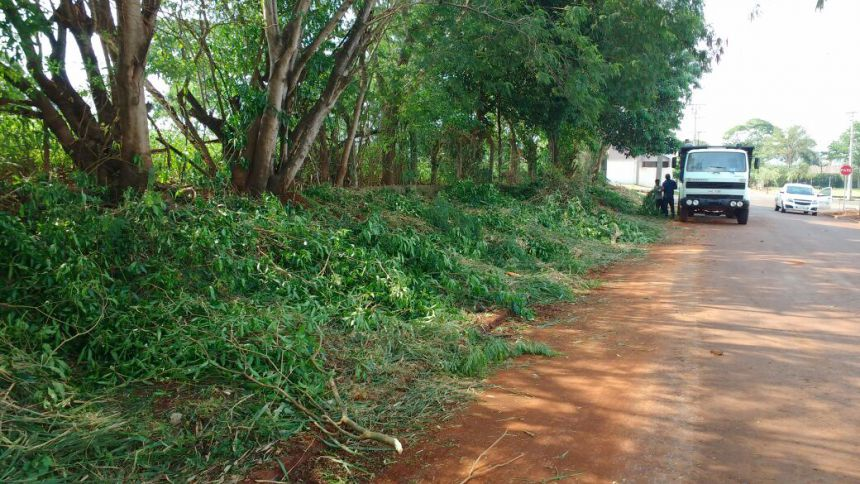 Mutirão de limpeza é realizado no bairro Parque do Lago