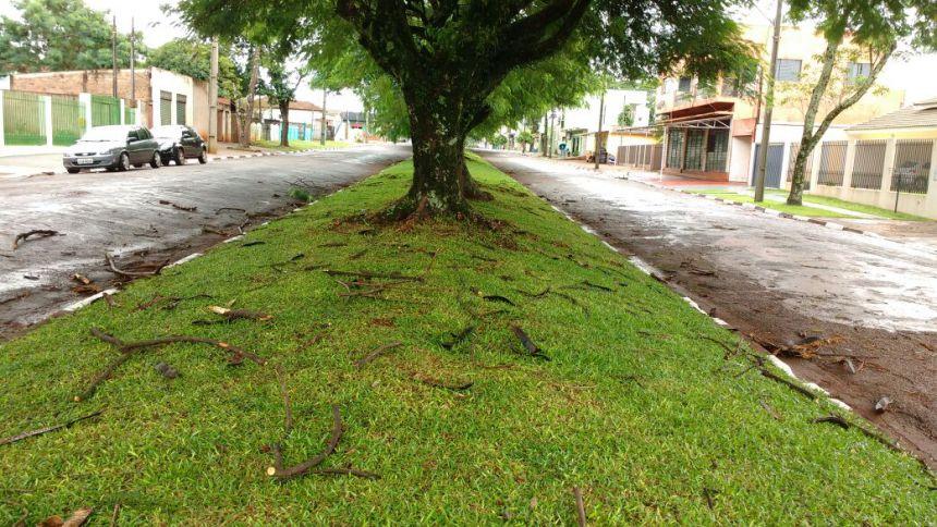 Equipe da Secretaria de Serviços Urbanos realiza limpeza da cidade após tempestade