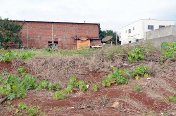 Está sendo elaborado projeto para que o pagamento da limpeza de terrenos abandonados seja feito pelos proprietários
