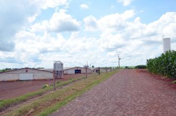 A Estrada Lovat tem grande fluxo, principalmente pelos vários aviários que se concentram na região
