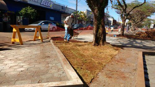 """Obras de revitalização da Avenida Ascânio avançam e região já ganha """"cara"""" nova"""