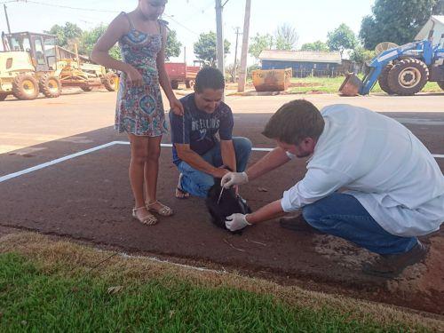 Secretaria de Desenvolvimento Econômico desenvolve ações para a comunidade durante o Bairro Ativo
