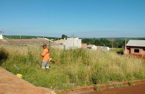 Quem não manter terreno limpo será notificado e poderá ser multado; prefeitura desenvolve campanha de conscientização
