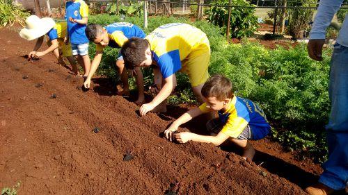 Projeto Formando Cidadãos com Saberes Agroecológicos e Sustentáveis