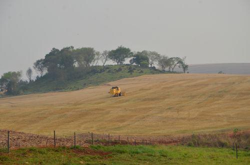 Hectare de terra em Ubiratã é o mais valorizado de toda a região