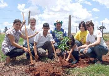 O Lions de Ubiratã plantou uma muda de Peroba Rosa