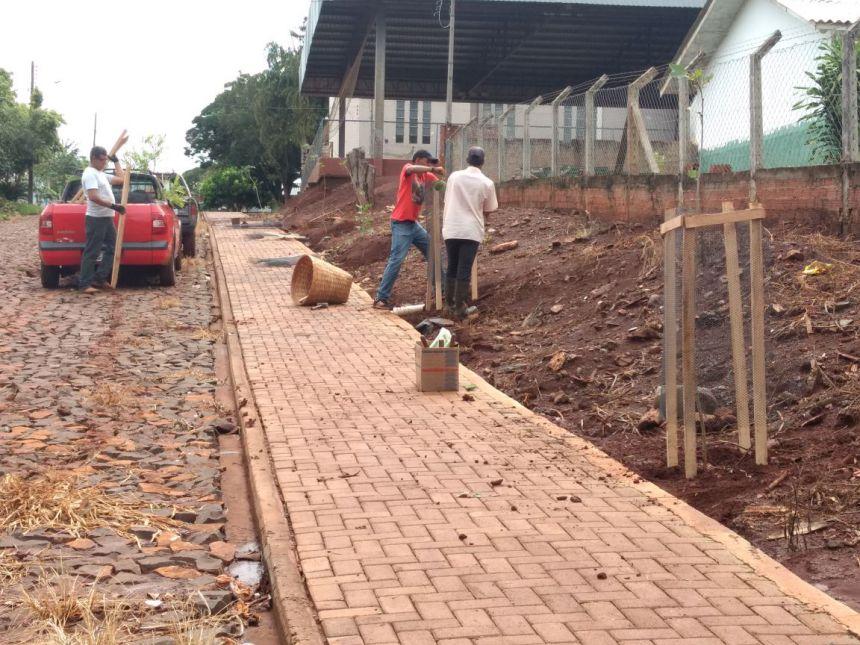 Prefeitura planta árvores na praça do distrito de Ubaúna