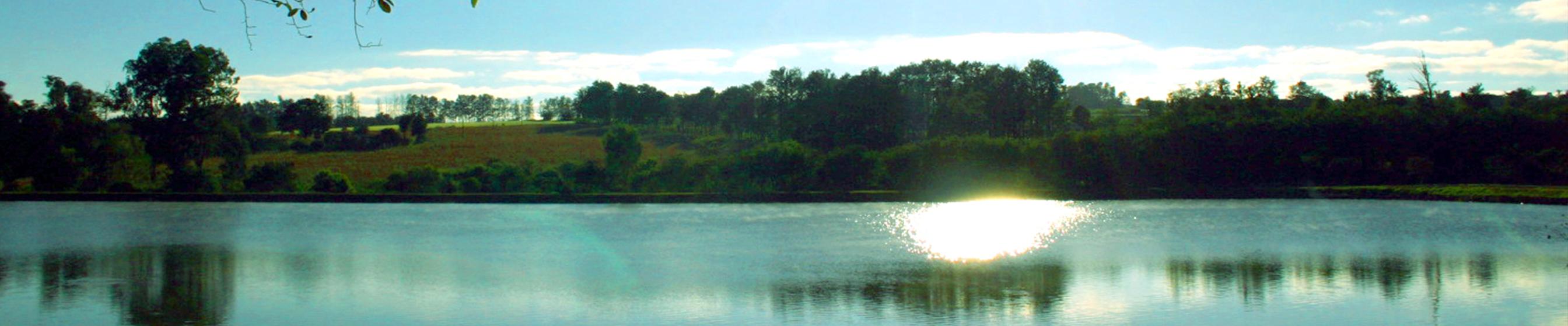 Lago no Horto Florestal