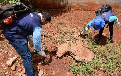 Secretaria de Saúde começa o ano com arrastão para combate a escorpiões