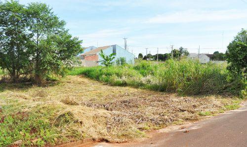 Multa por terreno sujo pode ultrapassar R$ 3 mil em Assis