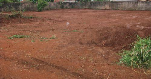 Proprietários de terrenos baldios devem realizar limpeza