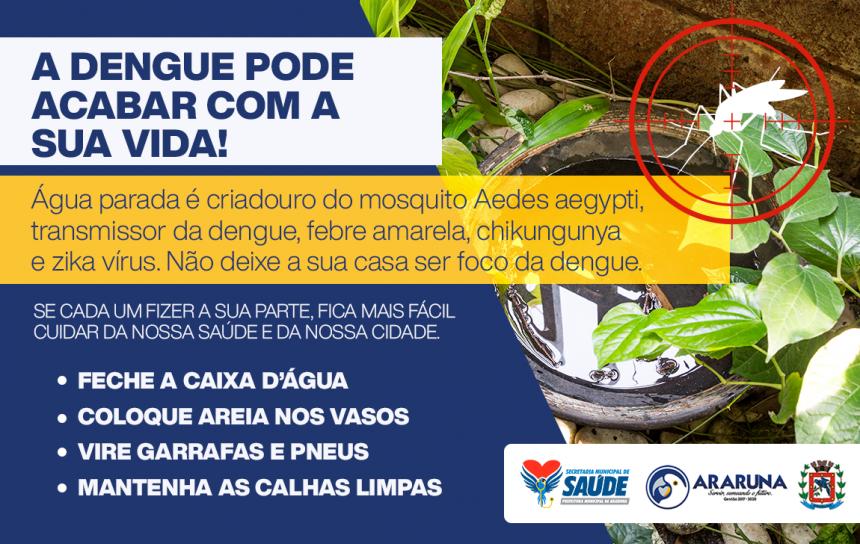 A Dengue Pode Acabar Com a Sua Vida