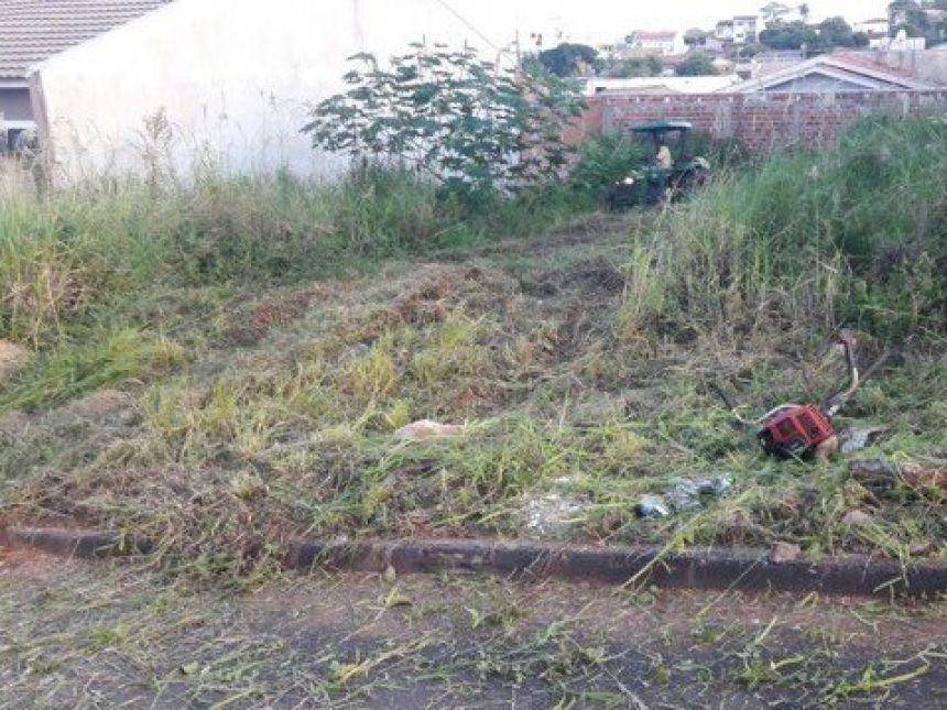 O custo da limpeza do terreno baldio particular realizada pelo Poder Público será cobrado do proprietário por meio de taxa. Fotografia: Tatiane Ferretti.